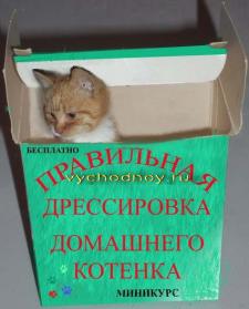 Коробочный продукт