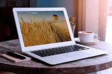 WordPress, «Alex-Handelsagentur»