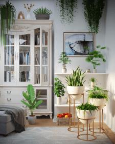 Визуализация комнатных растений в интерьере