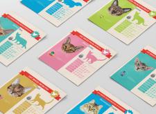 Дизайн иллюстраций и инфографики
