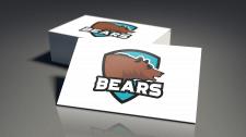 Логотип для Bears