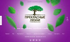Изменение функционала сайта для IT-студии на WP