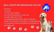 Визитка для ветеринара - back