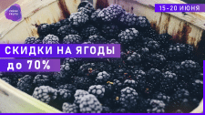 Баннер Fresh Fruits
