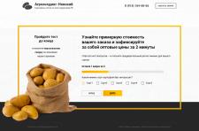 """Воронка опт картофеля """"Агрохолдинг-Невский"""" №1"""