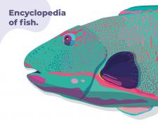 Иллюстрации для энциклопедии рыб