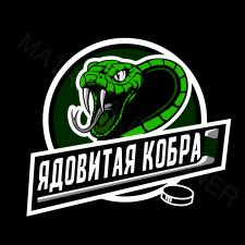 """Хоккейная команда """"Ядовитая кобра"""""""