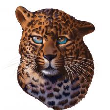иллюстрация гепарда