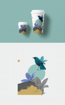 Packaging | Illustration | Collage