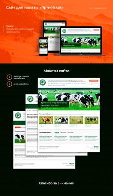 Дизайн сайта-визитки для Rpmolskot