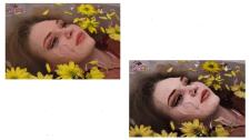 Художественная обработка портрета