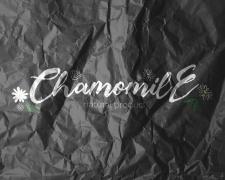 Логотип Chamomile