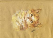 Котик (сухая пастель)
