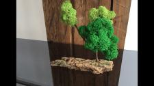 Декор из стабилизированного мха и древесины