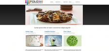 """Сайт """"Polo360"""""""