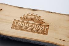 Лого для компании ТрансПлит