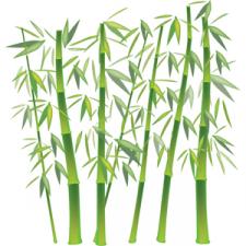 Бамбук (Illustaror).
