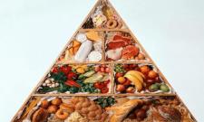 Пищевая пирамида - обман доверчивых людей