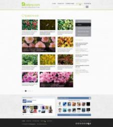 информационный портал садоводов roslyny.com