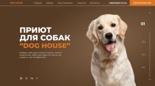 Дизайн первого экрана приюта для собак
