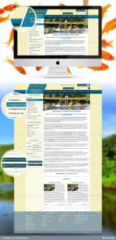 Дизайн сайта компании производителя надувных лодок