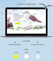 Разработал дизайн Landing page
