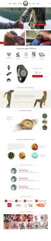 Редизайн сайта Arbor.world (наручные часы)