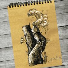 Старое дерево, штриховой рисунок