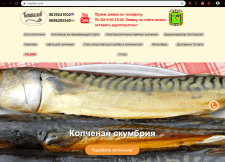 Аудит сайта: Koptilov.com
