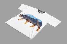 Принти для футболок