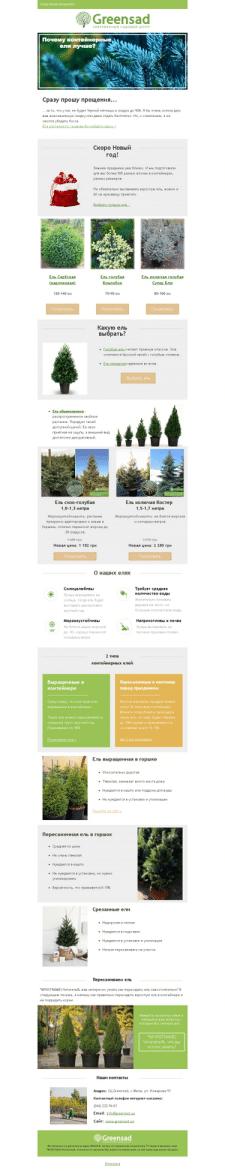 E-mail письмо для интернет-магазина растения