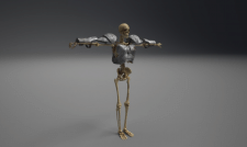 skeleton lowpoly for game