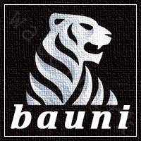 Логотип Bauni варіант 6