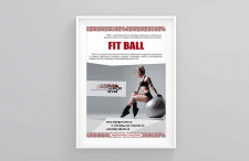 [poster] VG Fit Ball
