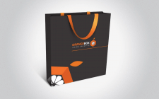 Разработка логотипа и ФС для ORANGEBOX