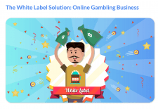 Text About White Label Casino Solution