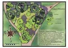 проект обновления сада