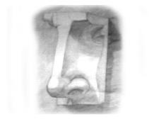 Рисунок гипсового носа