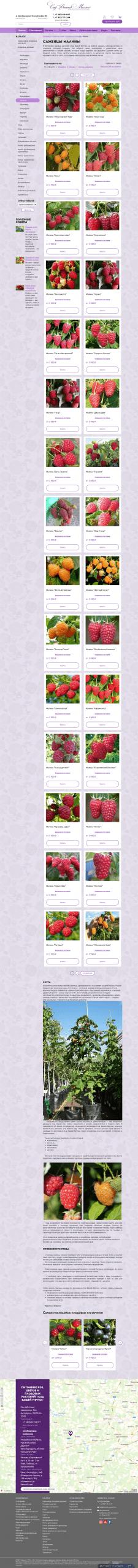 Описания плодовых кустарников - Малина.
