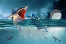 Акула и водолаз