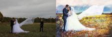 Весільна насичена кольором