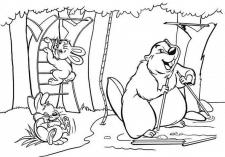 раскраска для каталога сортинвентаря для детей