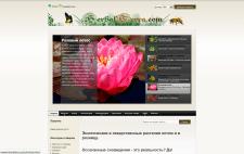 Интернет-магазин экзотических растений