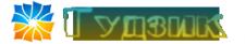 """Логотип """"Гудзик"""""""