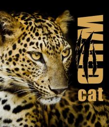 """Пакет """"Wild cat"""""""