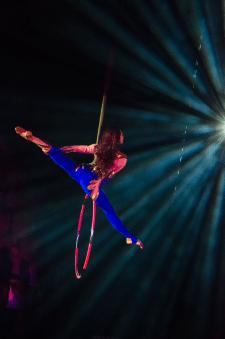 Ніч у цирку