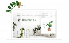 Інтернет-магазин кімнатних рослин