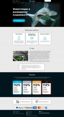 Дизайн многостраничного сайта +верстка