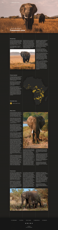 Animal World Encyclopedia - website design