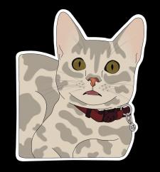 Стикеры с котиком
